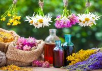 Ameliorarea starii de sanatate prin fitoterapie